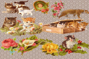 Print on Demand: Cat Clipart Graphic Illustrations By retrowalldecor
