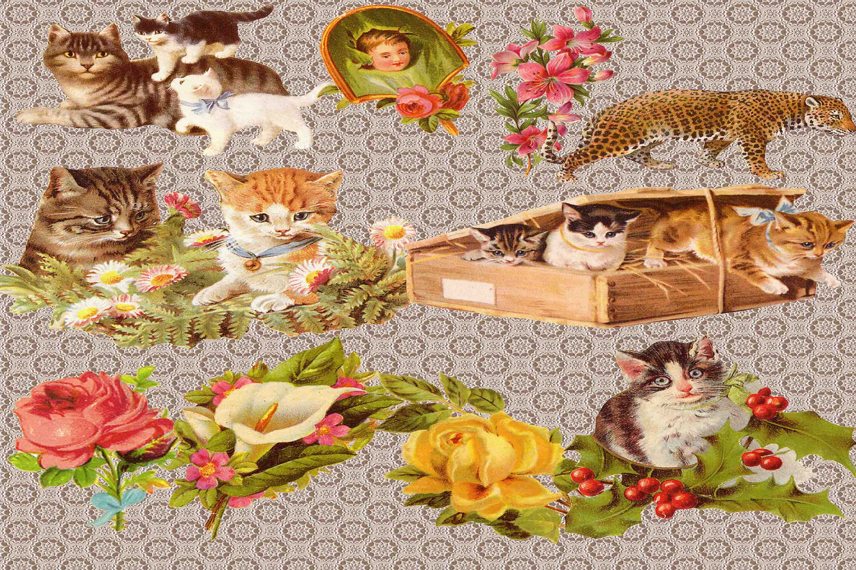 Download Free Cat Clipart Graphic By Retrowalldecor Creative Fabrica for Cricut Explore, Silhouette and other cutting machines.