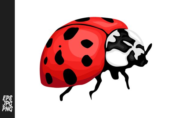 Print on Demand: Ladybug Vector Clipart Graphic Crafts By Arief Sapta Adjie - Image 1