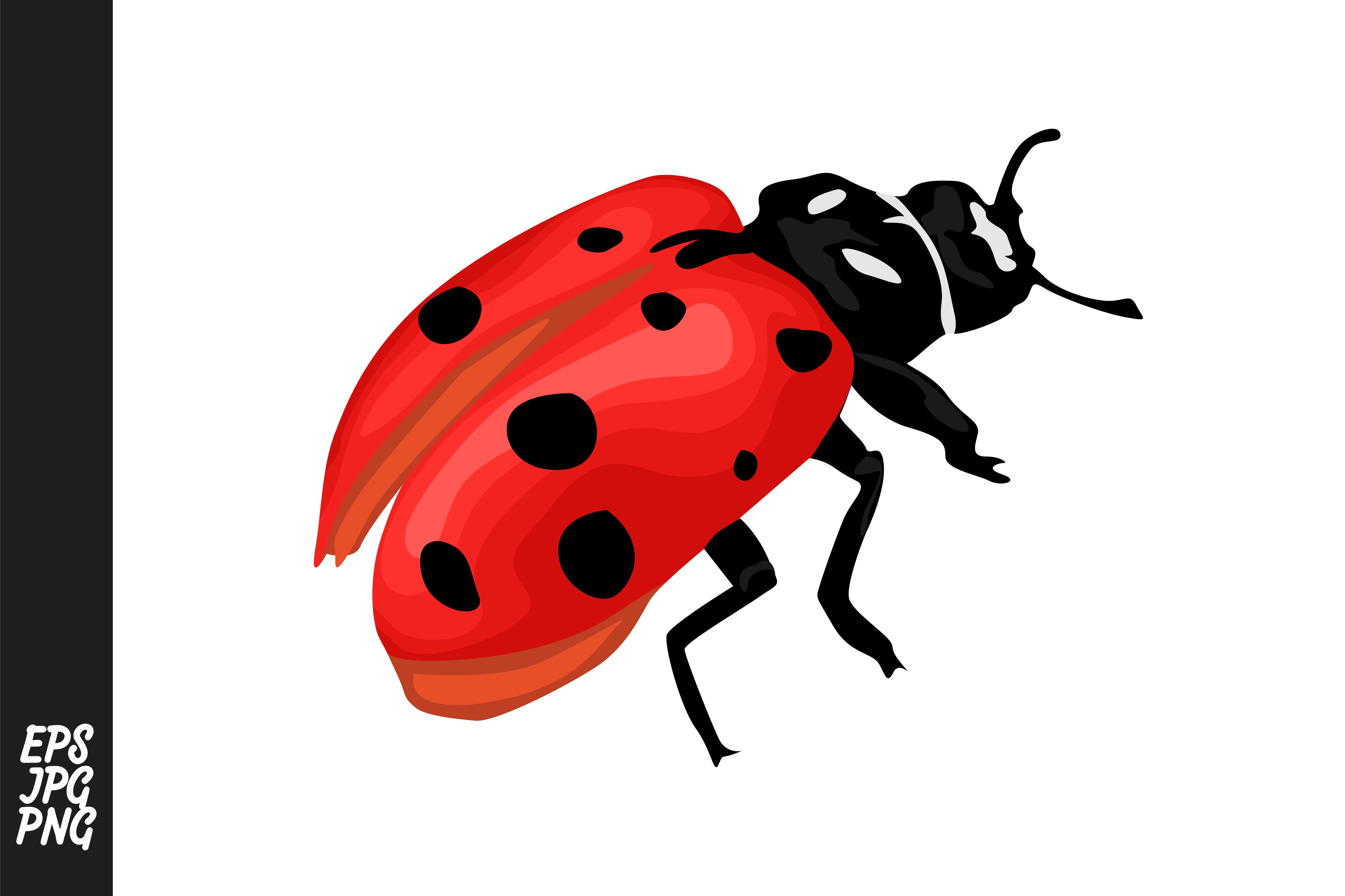 Download Free Ladybug Vector Clipart Graphic By Arief Sapta Adjie Creative for Cricut Explore, Silhouette and other cutting machines.