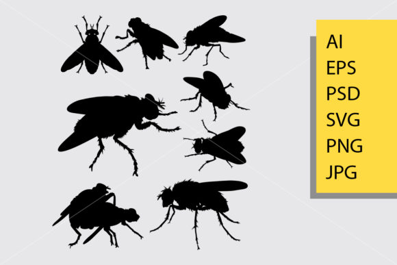 Download Free Fly Insect Animal Silhouette Graphic By Cove703 Creative Fabrica for Cricut Explore, Silhouette and other cutting machines.