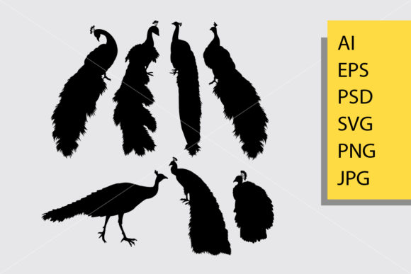 Peacock Bird Animal Silhouette Graphic Illustrations By Cove703