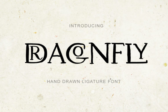 Print on Demand: Dragonfly Script & Handwritten Font By billcreativestore