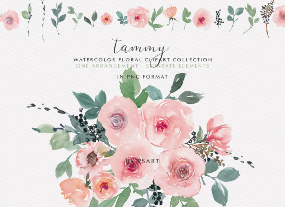 Pink Blush Watercolor Floral Clipart Set Graphic Illustrations By Patishop Art