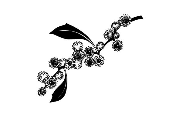 Download Free Wattle Svg Cut File By Creative Fabrica Crafts Creative Fabrica for Cricut Explore, Silhouette and other cutting machines.
