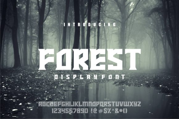 Print on Demand: Forest Display Font By Herulogo