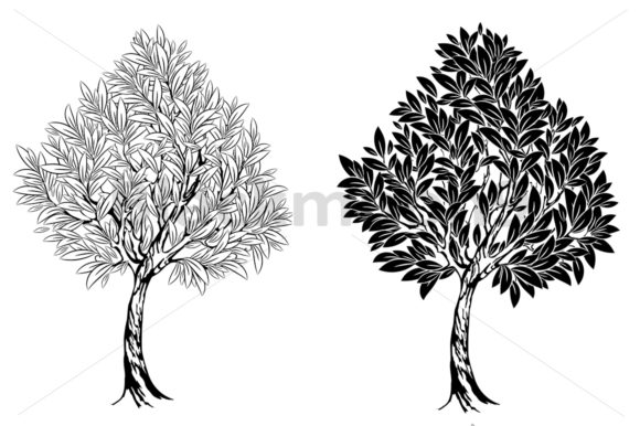Two Young Contour Trees Graphic Illustrations By Blackmoon9