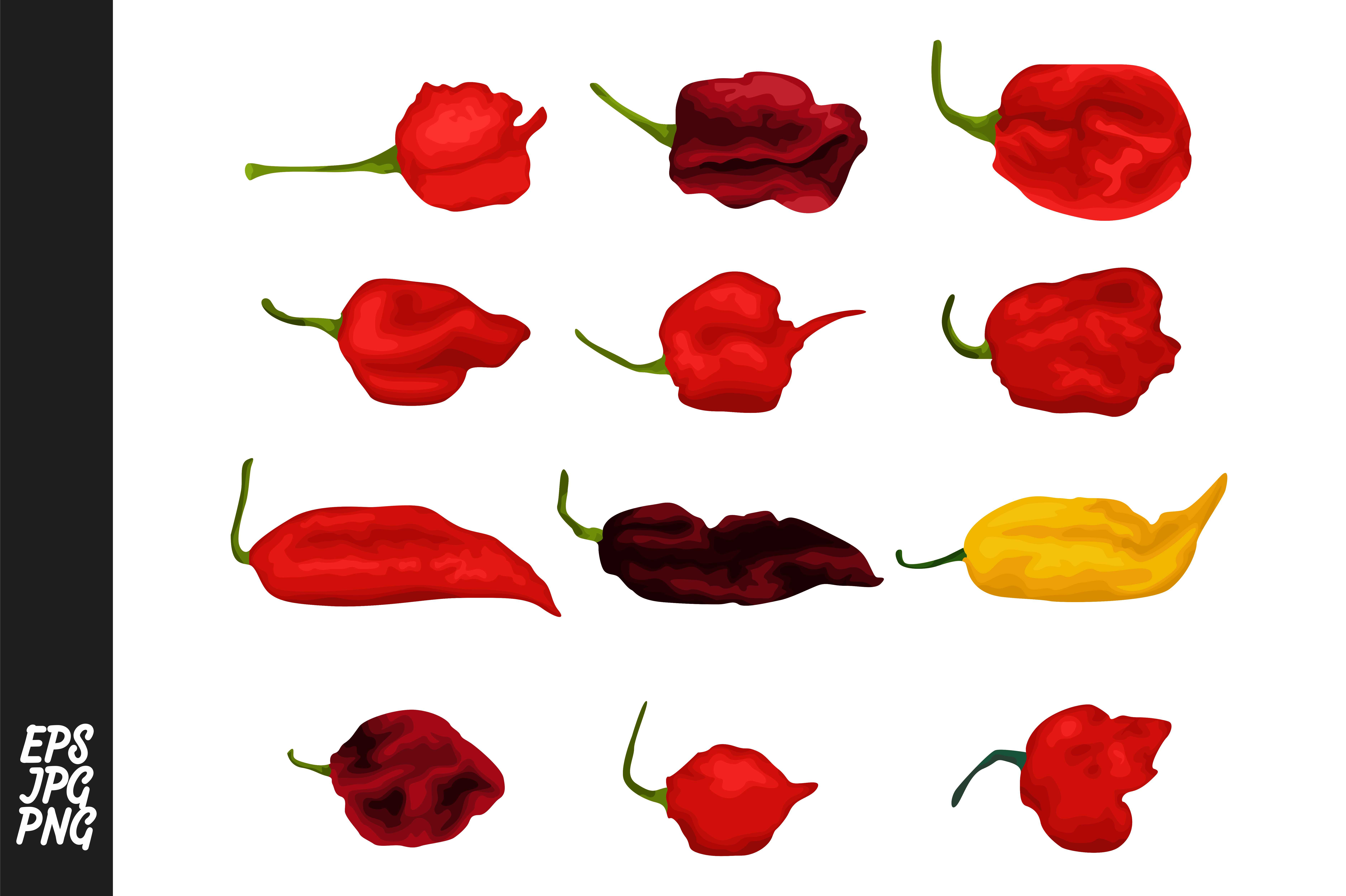 Download Free Various Kinds Of Chili Bundle Graphic By Arief Sapta Adjie SVG Cut Files