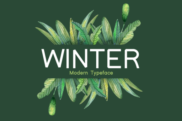 Print on Demand: Winter Display Font By Instagram Fonts - Image 1