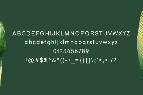 Print on Demand: Winter Display Font By Instagram Fonts - Image 4