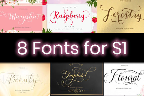 Print on Demand: 8 Beautiful Script Fonts Font By typehill
