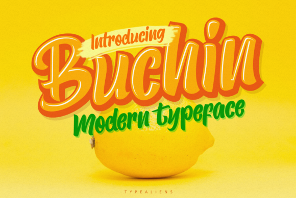 Print on Demand: Buchin Script & Handwritten Font By typealiens