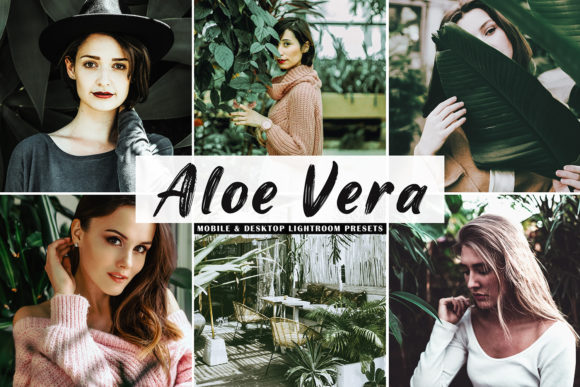 Print on Demand: Aloe Vera Lightroom Presets Graphic Actions & Presets By Creative Tacos