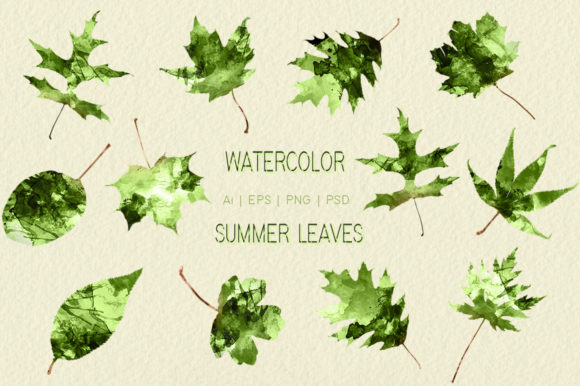 Watercolor Summer Leaves Graphic Objects By Dapper Dudell