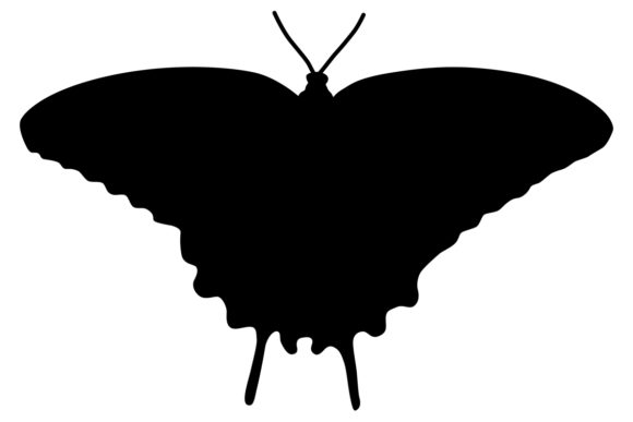 Download Free Butterfly Silhouette Graphic By Idrawsilhouettes Creative Fabrica for Cricut Explore, Silhouette and other cutting machines.