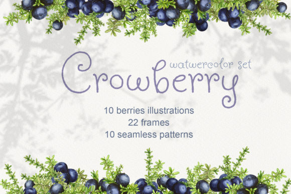 Print on Demand: Crowberry. Watercolor Set Illustrations Graphic Illustrations By Natalia Arkusha