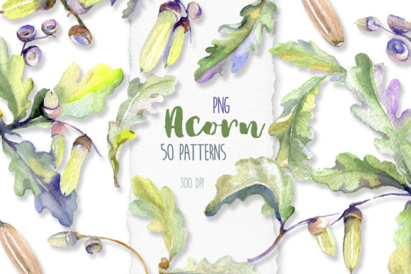 Print on Demand: Acorn Watercolor Graphic Illustrations By MyStocks
