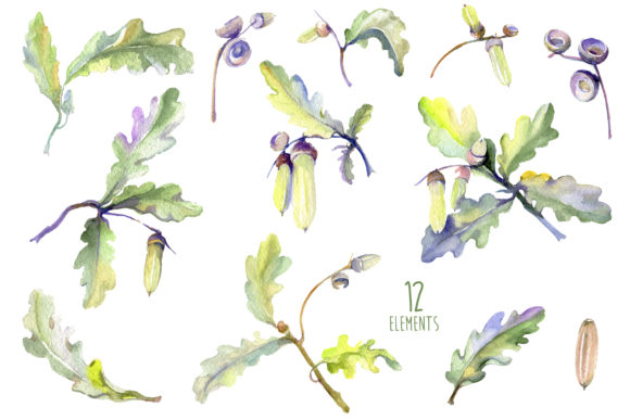 Print on Demand: Acorn Watercolor Graphic Illustrations By MyStocks - Image 2