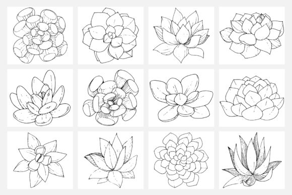 Print on Demand: Vector Illustration of Freesia Flower Graphic Illustrations By MyStocks - Image 2