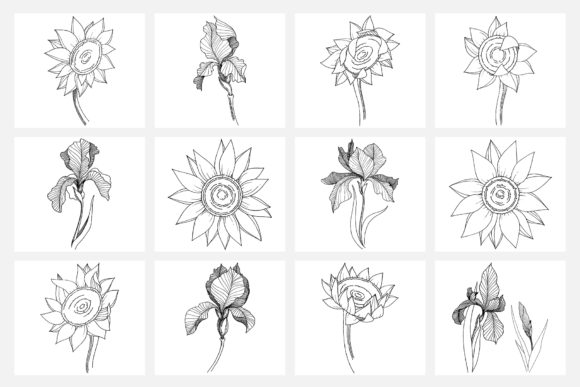 Print on Demand: Vector Illustration of Freesia Flower Graphic Illustrations By MyStocks - Image 4