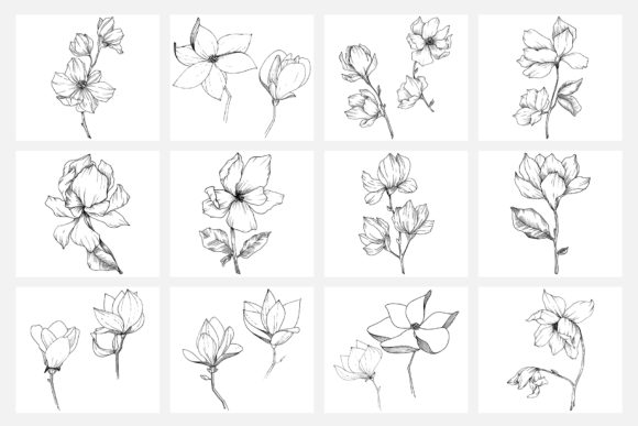 Print on Demand: Vector Illustration of Freesia Flower Graphic Illustrations By MyStocks - Image 7