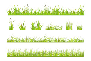 Print on Demand: Grass Vector Illustration Graphic Illustrations By sabavector