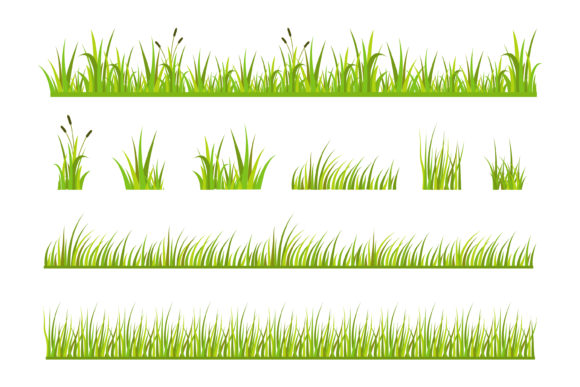 Print on Demand: Grass Vector Illustration Graphic Graphic Templates By sabavector