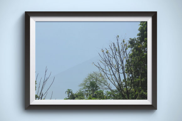 Tree with a Background of Blue Sky Graphic Nature By Kerupukart Production - Image 1