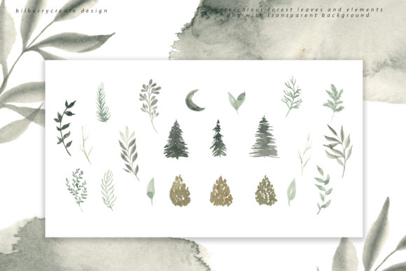 Coniferous Forest Art Collection Graphic Illustrations By BilberryCreate - Image 9