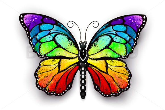 Rainbow Monarch Butterfly Graphic Illustrations By Blackmoon9