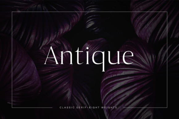 Print on Demand: Antique Serif Font By Cassandra Cappello