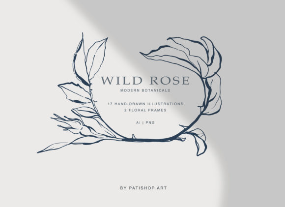 Modern Fine Art Hand Drawn Rose Clipart Graphic Illustrations By Patishop Art