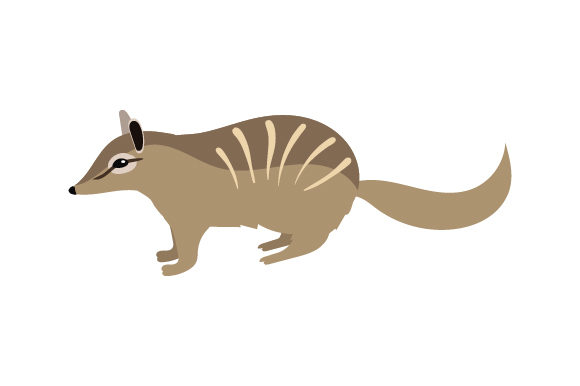 Numbat Australia Craft Cut File By Creative Fabrica Crafts