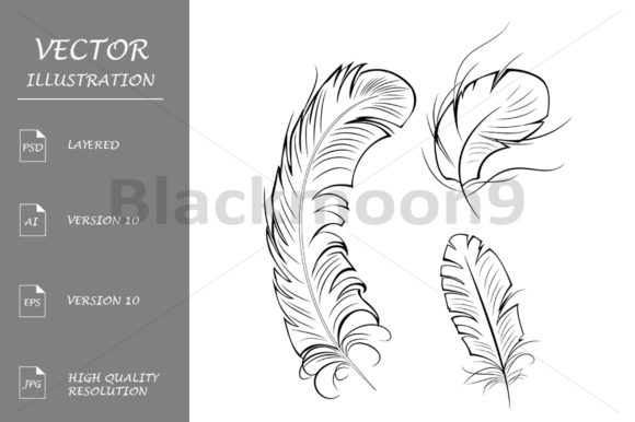 Download Free Three Contour Feathers Graphic By Blackmoon9 Creative Fabrica for Cricut Explore, Silhouette and other cutting machines.