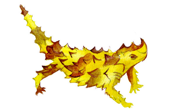 Thorny Devil in Watercolor Style Australia Craft Cut File By Creative Fabrica Crafts - Image 1
