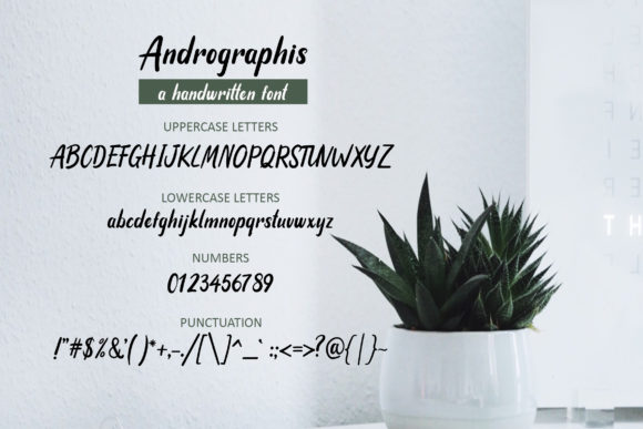 Print on Demand: Andrographis Script & Handwritten Font By practype - Image 3