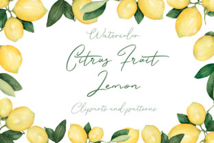 Download Free Watercolor Citrus Fruit Lemon Graphic By Maya Navits Creative for Cricut Explore, Silhouette and other cutting machines.