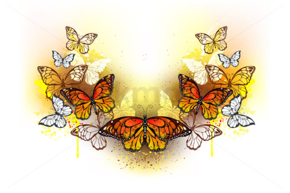 Symmetrical Pattern of Butterflies Graphic Illustrations By Blackmoon9