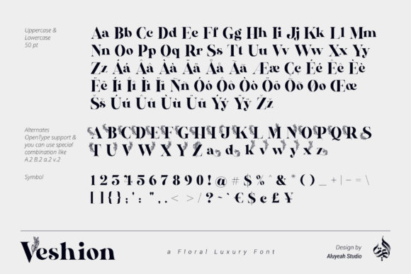 Print on Demand: Veshion Display Font By Aluyeah Studio - Image 6