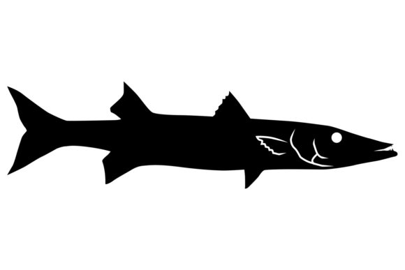 Download Free Barracuda Fish Silhouette Graphic By Idrawsilhouettes Creative for Cricut Explore, Silhouette and other cutting machines.