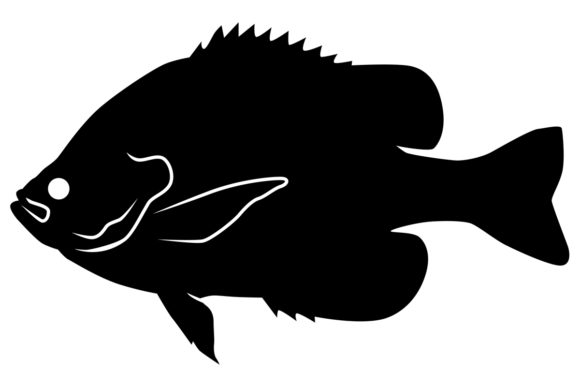 Download Free Bluegill Silhouette Graphic By Idrawsilhouettes Creative Fabrica for Cricut Explore, Silhouette and other cutting machines.