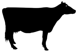 Download Free Cow Silhouette Grafico Por Idrawsilhouettes Creative Fabrica for Cricut Explore, Silhouette and other cutting machines.