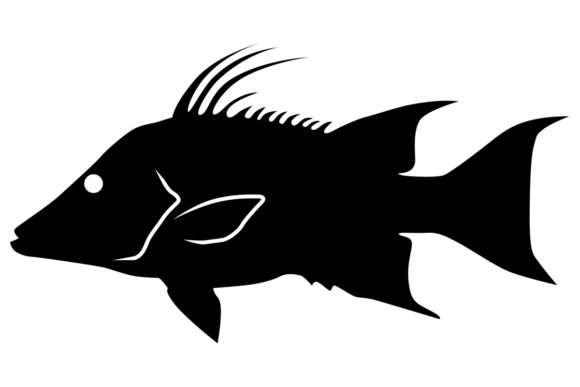 Download Free Hogfish Silhouette Graphic By Idrawsilhouettes Creative Fabrica for Cricut Explore, Silhouette and other cutting machines.