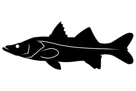 Download Free Snook Fish Silhouette Graphic By Idrawsilhouettes Creative Fabrica for Cricut Explore, Silhouette and other cutting machines.