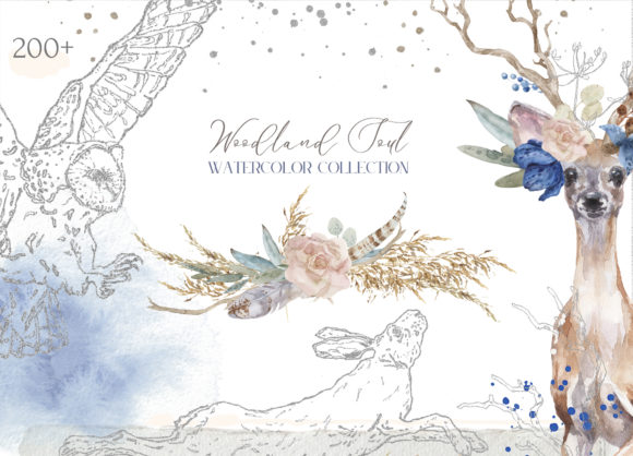 Woodland Soul Watercolor Collection Graphic Illustrations By Cat In Colour