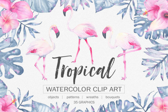 Tropical Watercolor Clip Art Graphic Illustrations By Madiwaso