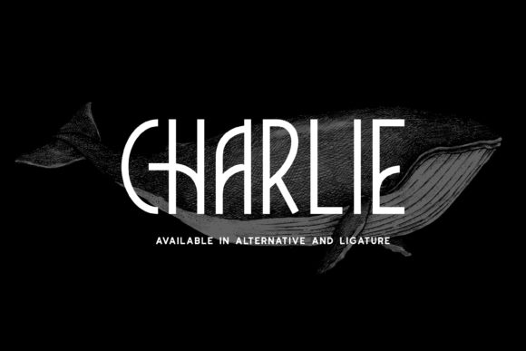 Print on Demand: Charlie Display Font By Fype Co.