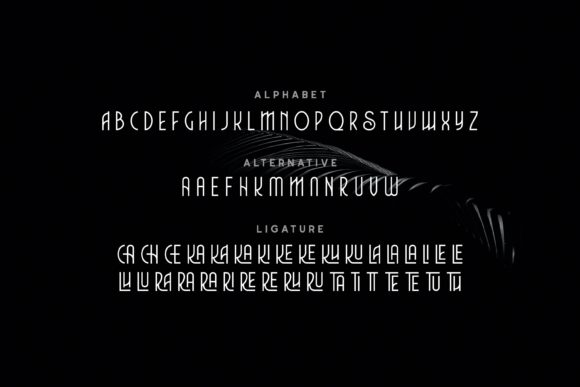 Print on Demand: Charlie Display Font By Fype Co. - Image 6
