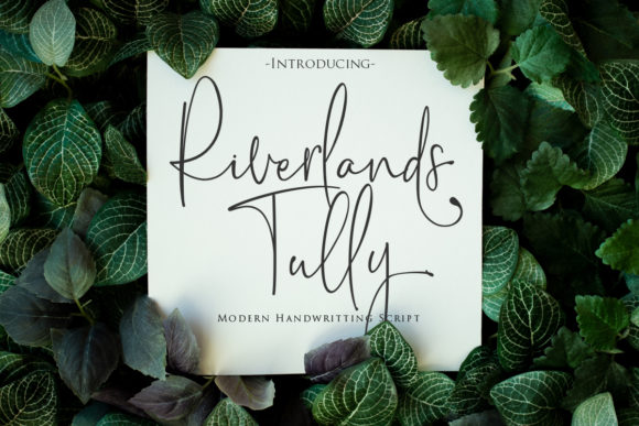 Print on Demand: Riverlands Tully Script & Handwritten Font By Gilar Studio