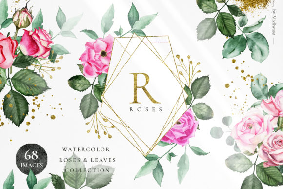 Rosette- Watercolor Roses Leaf Set Graphic Illustrations By Madiwaso